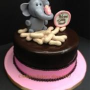 Elephant With Peanuts