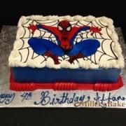 Spider Man Piping Gel