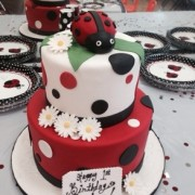 First Birthday Lady Bug