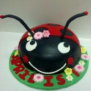 Lady Bug 1st Birthday